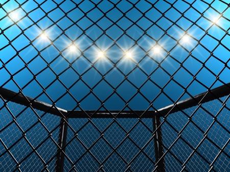 Fight cage , 3d illustration