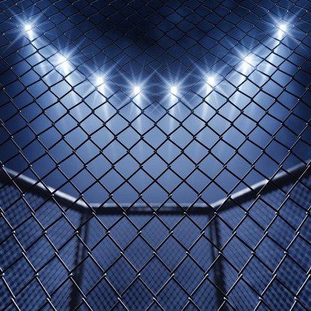 MMA cage and floodlights