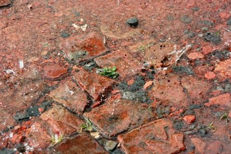 Heavy rain on gravel