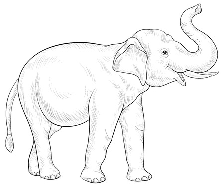 Illustration pour A cute elephant  image for adults.Line art style illustration for relaxing activity.Poster design for print. - image libre de droit