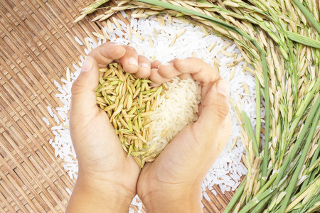 Foto de White and brown rice held in heart shaped hand over white rice background. - Imagen libre de derechos