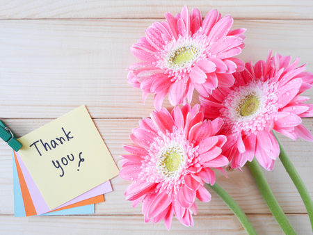 Foto für Pink flower and word Thank you on colorful note paper with wood background - Lizenzfreies Bild