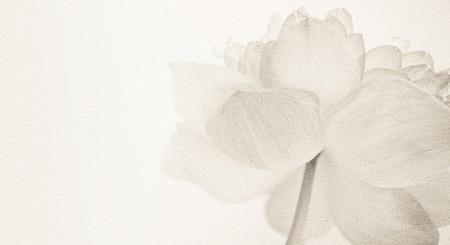 Photo pour sweet color lotus in soft color and blur style on mulberry paper texture - image libre de droit