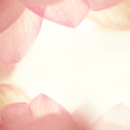 Photo for sweet color lotus in soft color and blur style on mulberry paper texture - Royalty Free Image