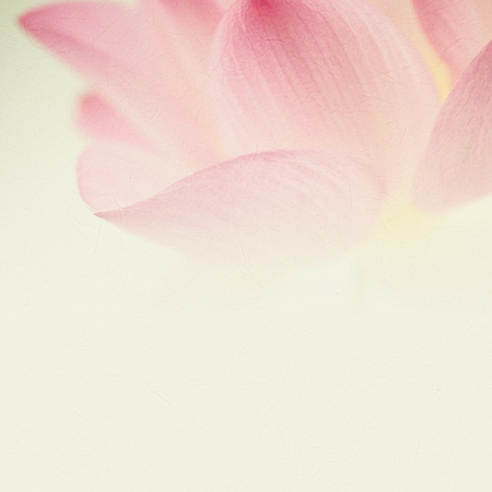 Photo for sweet pink lotus in soft and blur style for background - Royalty Free Image