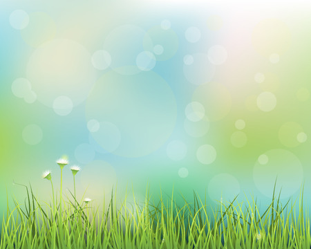 Illustration pour Vector illustration abstract green grass. Spring nature field with little white flowers meadow and water drops on green leafs, with bokeh effect on blue-green pastel colorful background .Blank space for your design - image libre de droit