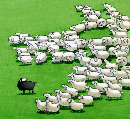 a flock that seen from above form a wolf who wants to eat the black sheep