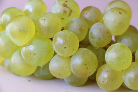 Photo pour Bunch of grapes - image libre de droit