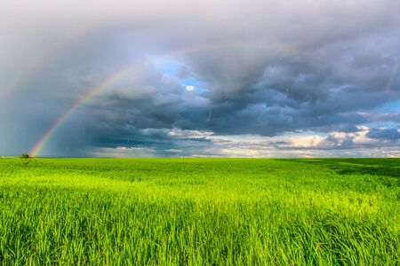 Photo for double rainbow in the blue cloudy dramatic sky over green field and a forest illuminated by the sun in the country side - Royalty Free Image