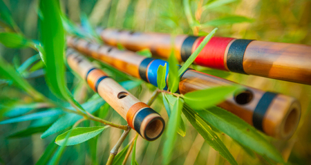 Photo for Three colourful bamboo flutes placed on tree branches with young green leaves. - Royalty Free Image