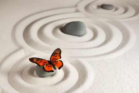 Photo for Zen rocks with butterfly - Royalty Free Image