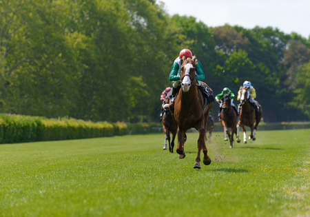 Photo for Several racehorses with jockeys during a horse race - Royalty Free Image
