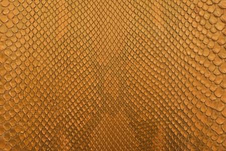 Gold python snack skin texture background.