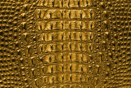 Gold Crocodile bone skin texture background