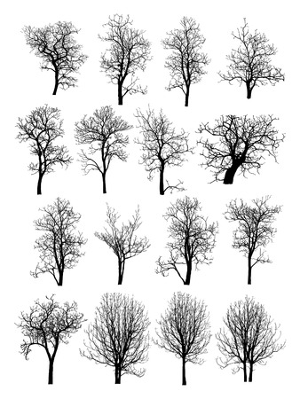 Illustration pour Dead Tree without Leaves Vector Illustration Sketched, EPS 10  - image libre de droit