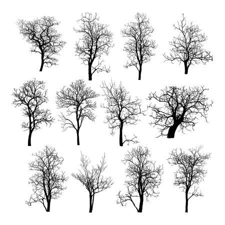 Ilustración de Dead Tree without Leaves Vector Illustration Sketched, EPS 10  - Imagen libre de derechos