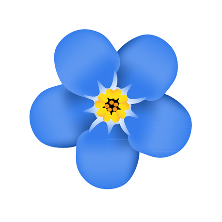 Ilustración de Forget me not flower blossom. Blue flower. Vector illustration - Imagen libre de derechos