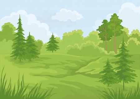 Landscape  summer green forest and blue sky illustration