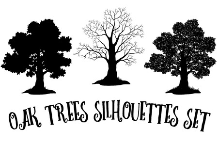 Illustration pour Set of Oak and Grass Silhouettes, Trees Without Leaves and Crowns Versions with Different Study of Details. Vector - image libre de droit