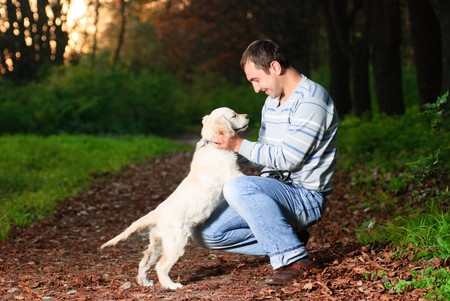 Golden retriever and man are playing in park