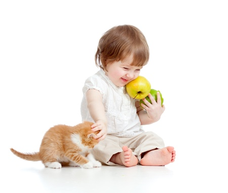 Photo for little girl with healthy food  playing with Scottish kitten - Royalty Free Image