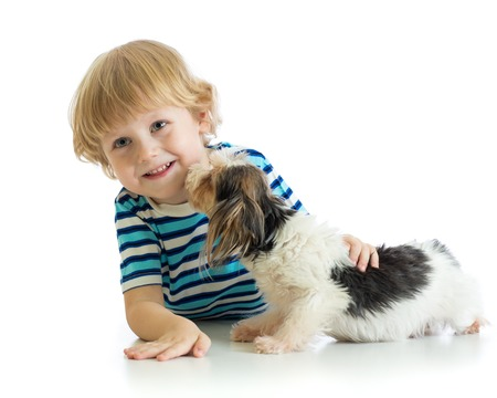 Foto de Child little boy with his puppy dog. Isolated on white background. - Imagen libre de derechos