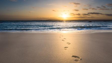 Foto de footsteps in the sand - Imagen libre de derechos