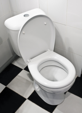 Closeup of toilet, lid open