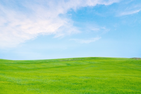 Photo pour Sky, Grass, Field. - image libre de droit