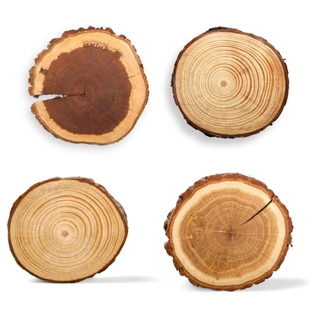 Photo pour Tree Ring, Log, Wood. - image libre de droit