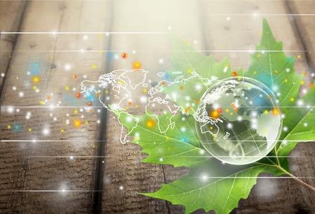Foto de Network, networking, business. - Imagen libre de derechos