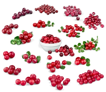 Photo for Cranberry, Fruit, Berry Fruit. - Royalty Free Image