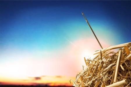 Foto de Needle in a haystack. - Imagen libre de derechos