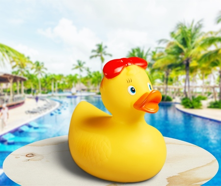 Photo for Rubber duck at swimming pool - Royalty Free Image