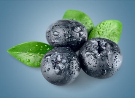 Photo for Blueberries. - Royalty Free Image