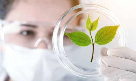 Foto de A scientist in a laboratory analyzes the soil and the plants inside  to collect the plant DNA. Concept: analysis, dna, bio, microbiology, augmented reality, biochemistry, immersive technology - Imagen libre de derechos
