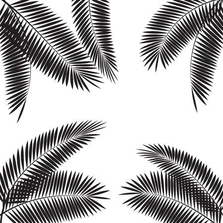 Illustration pour Palm Leaf Vector Illustration  - image libre de droit