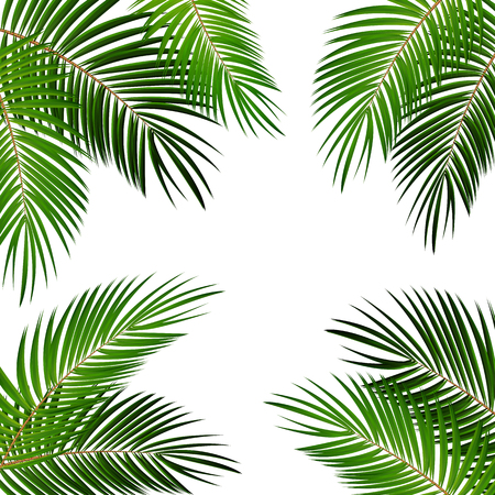 Illustration for Palm Leaf Vector Background Illustration EPS10 - Royalty Free Image