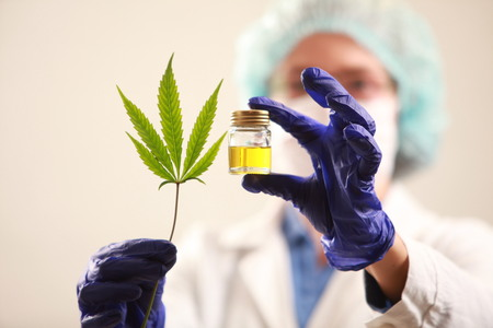 Photo for Woman doctor holding a cannabis leaf and oil.alternative medicine - Royalty Free Image