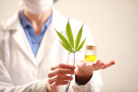 Foto de Woman doctor holding a cannabis leaf and oil.alternative medicine - Imagen libre de derechos