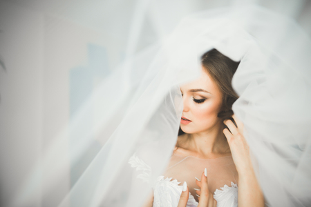 Photo pour Gorgeous bride in robe posing and preparing for the wedding ceremony face in a room - image libre de droit