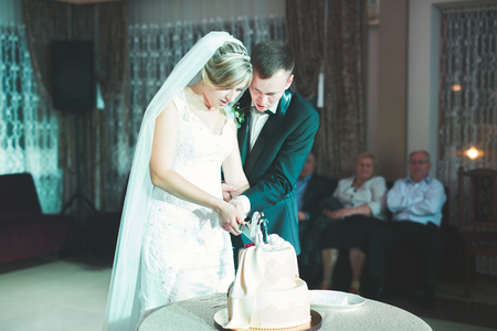 Photo pour Bride and groom at wedding cutting the wedding cake - image libre de droit