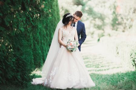 Foto de Beautiful romantic wedding couple of newlyweds hugging in park - Imagen libre de derechos
