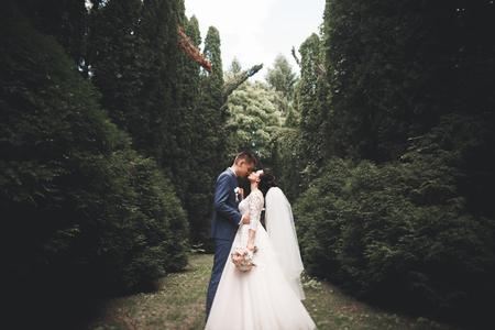 Foto de Happy wedding couple walking in a botanical park - Imagen libre de derechos