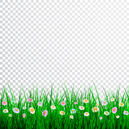 Illustration pour Green Grass with flowers Border Set, Vector Illustration. - image libre de droit
