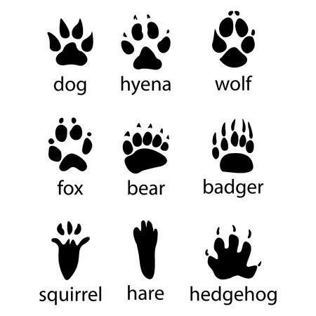 Ilustración de Various traces of wild animals design icon - Imagen libre de derechos