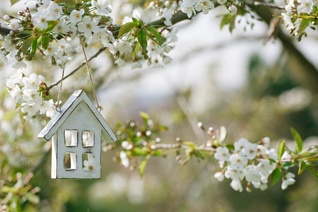 Foto de Little wooden house in Spring with blossom cherry flower sakura - Imagen libre de derechos