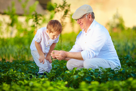 Foto für grandfather explains grandson the nature of plant growth - Lizenzfreies Bild