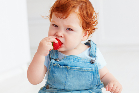 Foto de cute ginger toddler baby tasting strawberries - Imagen libre de derechos