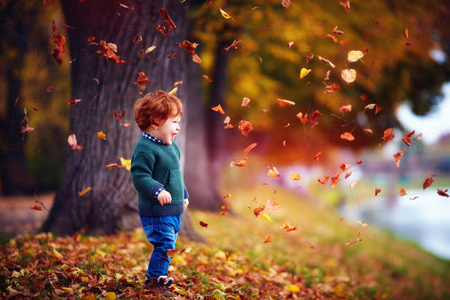 Foto de happy toddler baby boy having fun, playing with fallen leaves in autumn park - Imagen libre de derechos